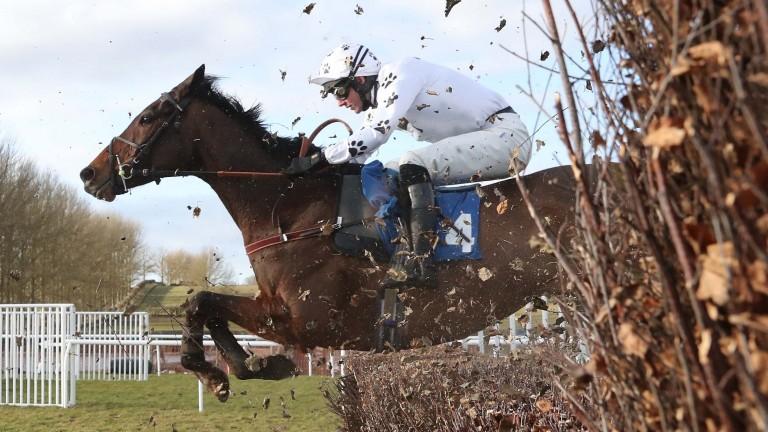 Big River will once again be ridden by jockey Derek Fox