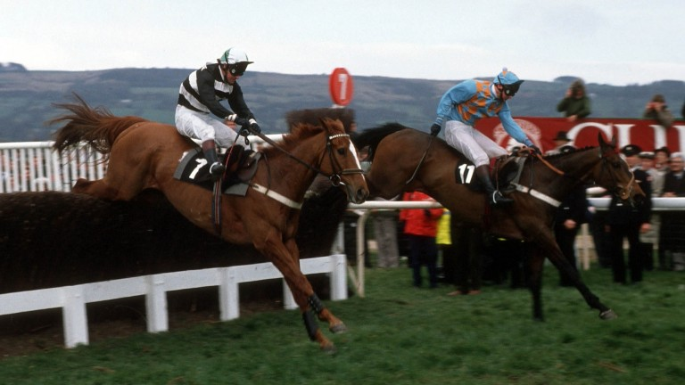 Norton's Coin (left) was a shock winner of the Gold Cup in 1990