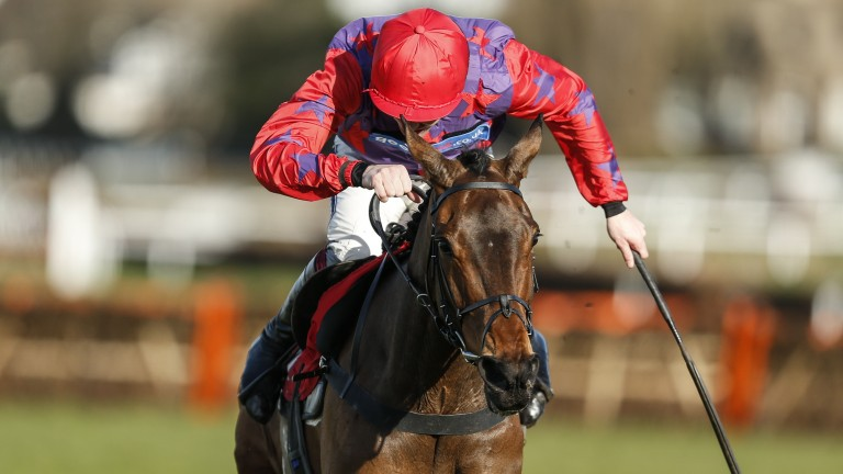 Midnight Tune digs deep under Aidan Coleman to land the Grade 2 mares' novice hurdle