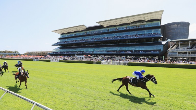 Winx coasts home in a barrier trial