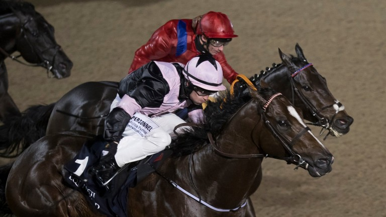 Hit The Bid (nearside): thriving in Dubai following Group 2 win