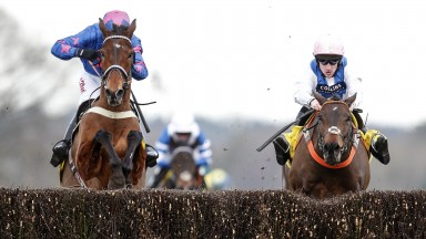 Waiting Patiently (right) and Cue Card fight out a thrilling finish to the Ascot Chase on Saturday