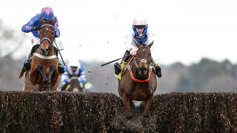 Waiting Patiently (right) goes low over the last under Brian Hughes before beating Cue Card (Paddy Brennan) in the Ascot Chase
