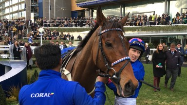 Cue Card and Paddy Brennan after their excellent Ascot Chase second