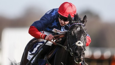 Job done: Black Corton and Bryony Frost win again