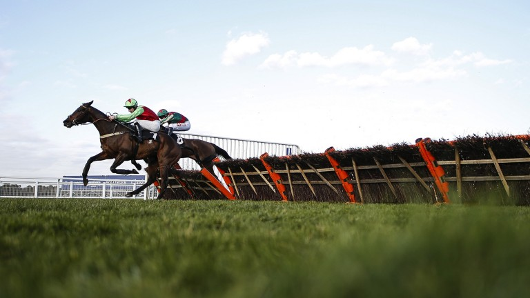 A true Patriote: Le Patriote (near) hits the front from Friday Night Light in the 2m3½f handicap hurdle before holding off his rival up the run-in