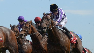 Victory Bond: misses Group 3 feature at Lingfield on Saturday
