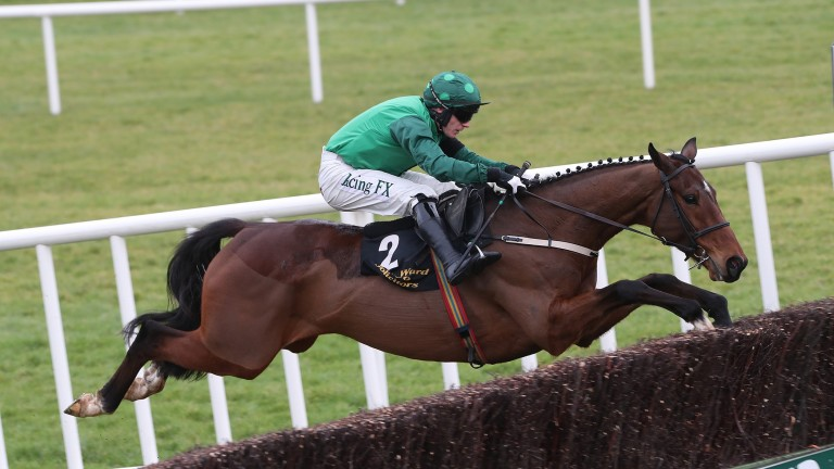 Footpad: could be vulnerable to a pace meltdown as plenty of horses in the Arkle have won from the front in the past