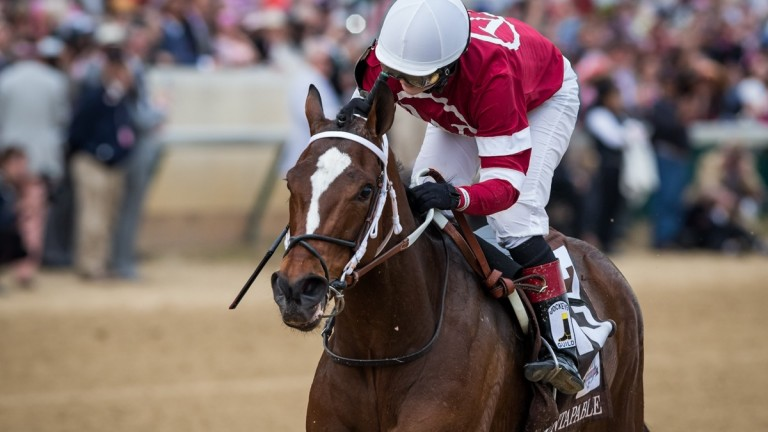Untapable: wins the Kentucky Oaks at Churchill Downs in 2014