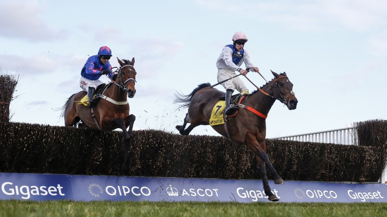 Waiting Patiently and Brian Hughes lead Cue Card and Paddy Brennan over the last at Ascot