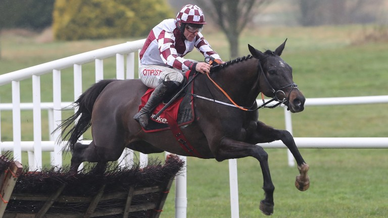Diamond Cauchois: ran out a comfortable nine-length winner of the Grade 2 Boyne Hurdle at Navan on Sunday