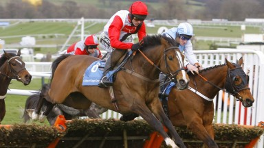 So near yet so far: Celestial Halo jumps the last just in front of winner Hardy Eustace in the 2009 Champion Hurdle