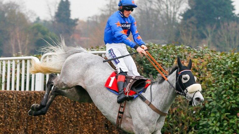 Antartica De Thaix: bids to repeat last year's Huntingdon win