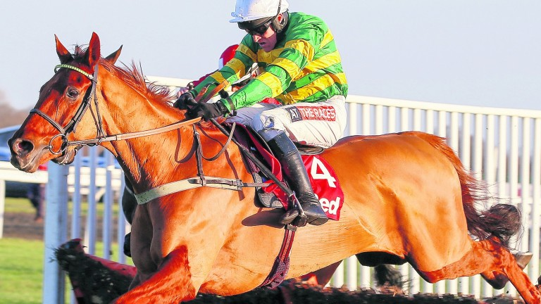 Yanworth: will resume career over hurdles in Sun Bets Stayers' Hurdle