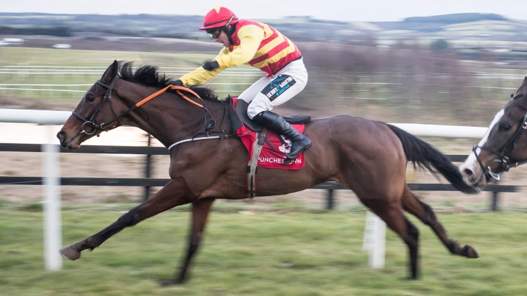Von Humboldt and Ritchie Deegan land the gamble for Byrnes at Punchestown