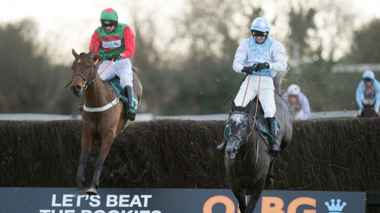 Talk Of The South (left): has run well in defeat at Warwick previously