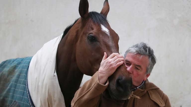 Loved up: Nigel Twiston-Davies plants a kiss on The New One