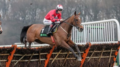 The New One and Sam Twiston-Davies head for a fourth consecutive victory in the Haydock Champion Hurdle Trial