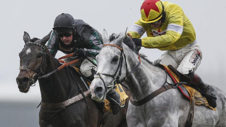 Every inch the professional - Altior (left) outpoints Politologue on his latest run at Newbury