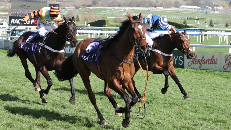 Might Bite (left) rallies to beat Whisper in a memorable RSA Chase at Cheltenham in 2017
