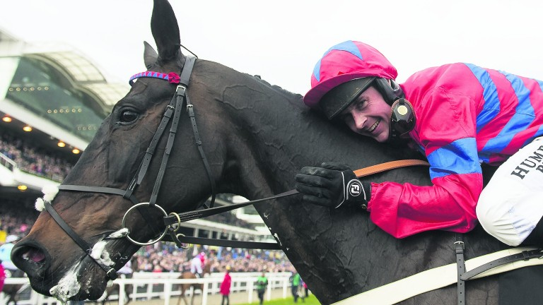 A two-year-old half-brother to the mighty Sprinter Sacre goes under the hammer next month