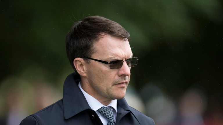 Aidan O'Brien: hoping the draw will help Clear Skies