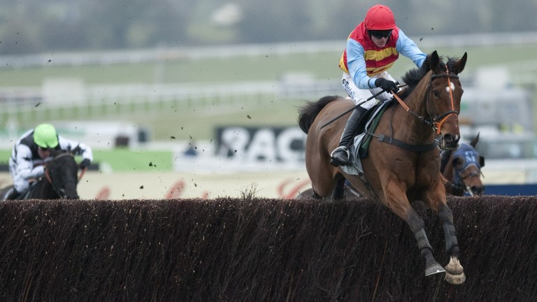 Hunt Ball: made a rapid rise through handicaps resulting in a festival victory