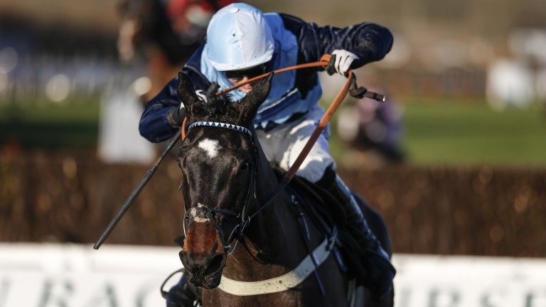Vinnie Lewis: won the Sussex National at Plumpton in January