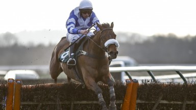 Sahara Haze gives her amateur rider Ben Jones his first winner under Rules inm the hands and heels handicap hurdle at Warwick on Friday