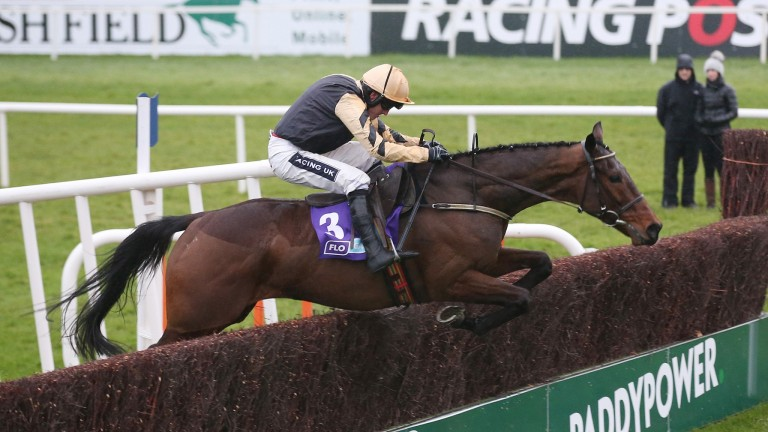 Bellshill: returns to action at Fairyhouse