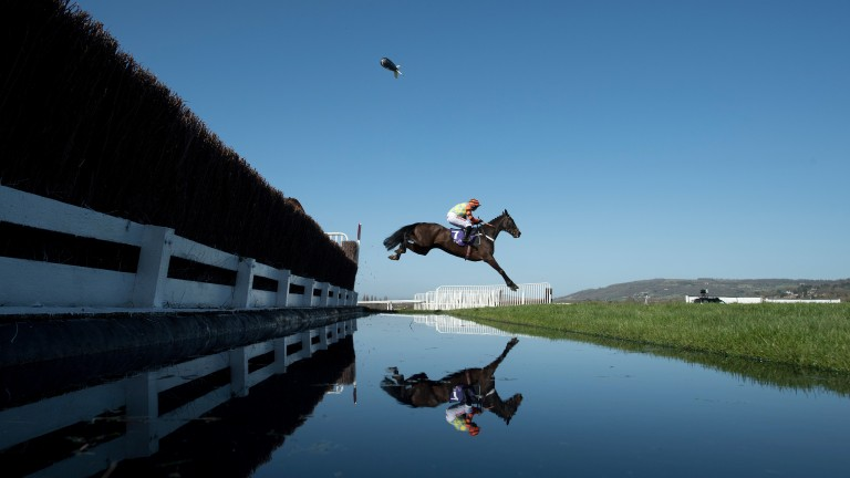 Might Bite in a less wayward moment en route to winning last year's RSA Chase