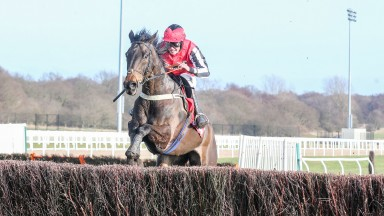 Baywing and Ryan Day jump the last on their way to winning the Betfred Eideer Chase at Newcastle