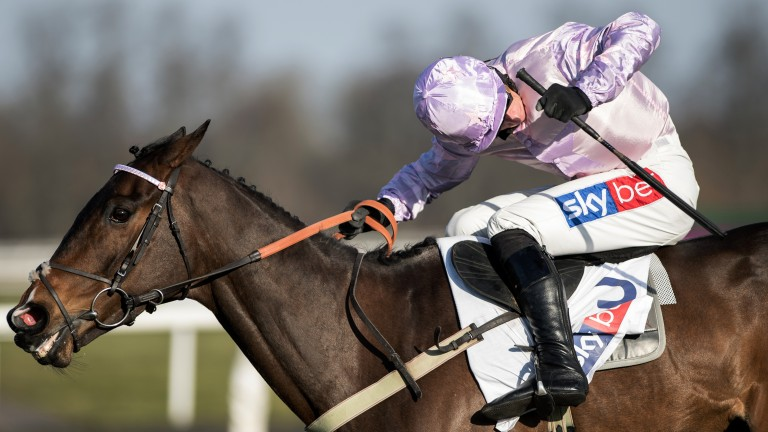 Global Citizen: won the Dovecote Hurdle at Kempton and could run at Aintree next month