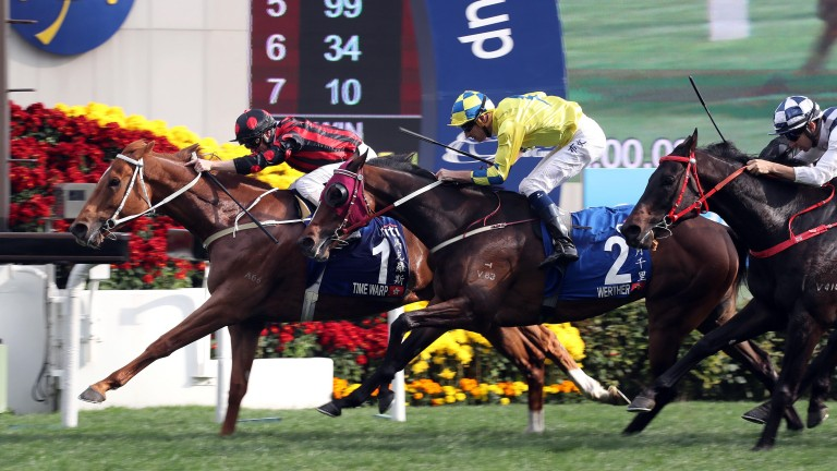 Time Warp (left): bought to race in Hong Kong by Sackville Donald