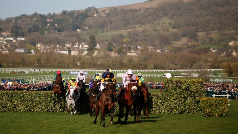 The countdown is on to the Cheltenham Festival