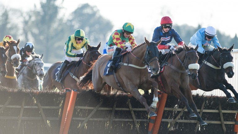 Lil Rockerfeller (blinkers, green cap) was just outpointed by Old Guard (red cap) at Fontwell on Sunday