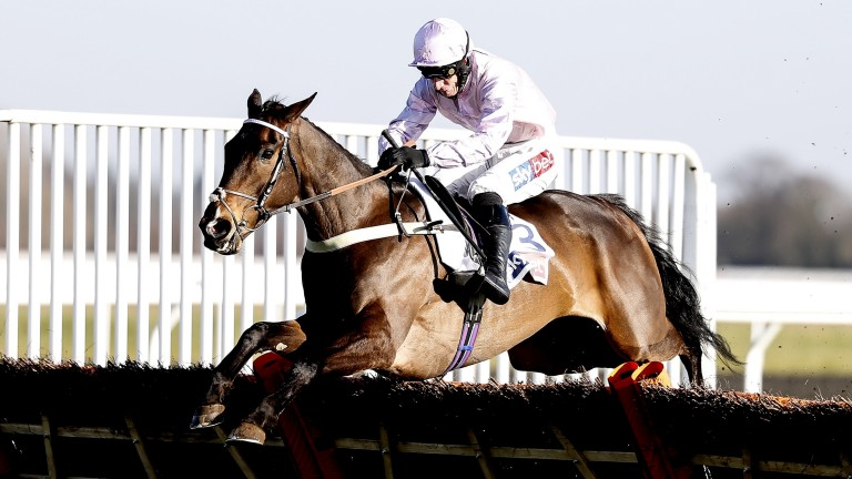 Global Citizen: barely put a foot wrong in his Dovecote Novices' Hurdle romp