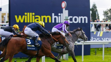 Capri and Ryan Moore hit the line first in the 2017 William Hill St Leger