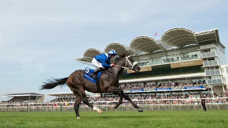 Soft Falling Rain on his way to winning the Joel Stakes at Newmarket in 2013
