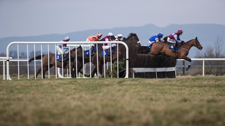 Thurles: stages the only meeting in Britain and Ireland on Thursday