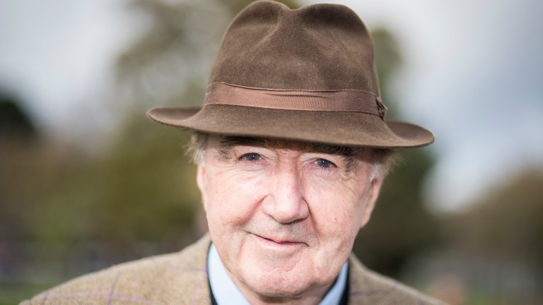Dermot Weld: Saddles two newcomers for Moyglare Stud