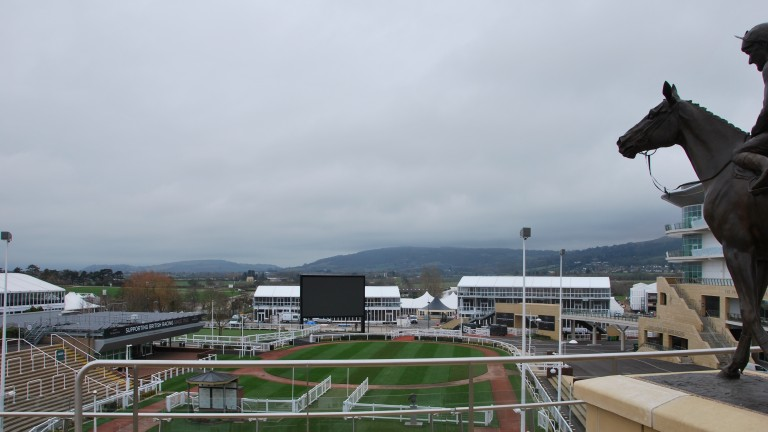 Cheltenham: going eased to soft, heavy in places on Saturday morning
