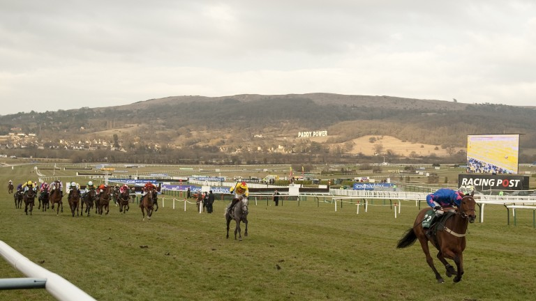 Cue Card and Joe Tizzard storm up the Cheltenham hill in the 2010 Champion Bumper