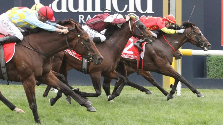 Russian Revolution (2) on his way to winning Saturday's Oakleigh Plate at Caulfield