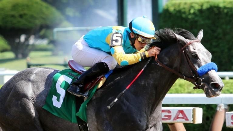 El Kabeir winning at Saratoga