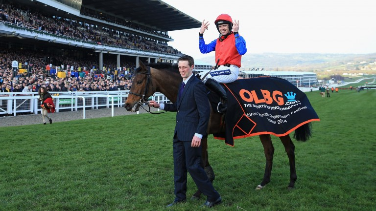 Quevega after winning her sixth Mares' Hurdle at Cheltenham