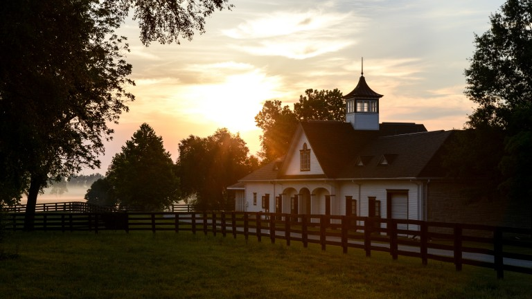 Spendthrift Farm in Kentucky, where Lord Nelson commands a $25,000 fee in his first season