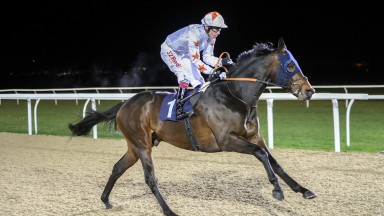 Gronkowski: Jeremy Noseda's improving runner impressed on his last start