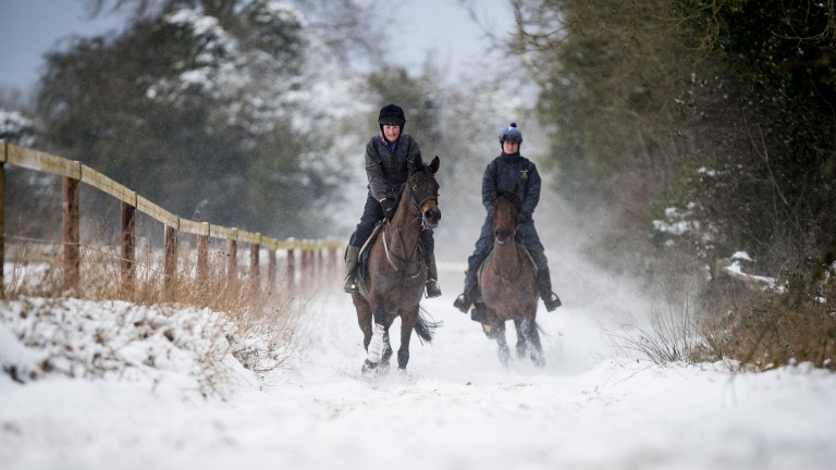 Jumps racing is set to return at Thurles on Thursday but Navan is cancelled