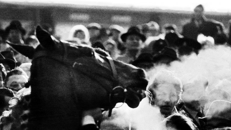 Arkle – also known as 'Himself' – is led in after defeating Mill House in the 1964 Gold Cup